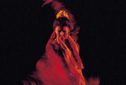 Jaleo Flamenco - A Compás