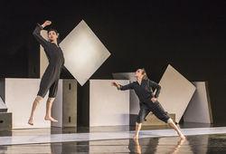 Photo for Nederlands Dans Theater 2
