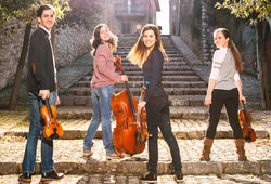 Photo for Alauda Quartet