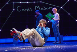 Photo for The Curious Incident Of The Dog In The Night-Time
