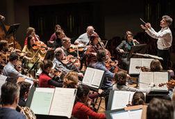 Flanders Symphony Orchestra