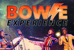Photo for Bowie Experience