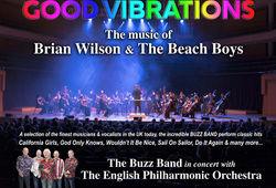 Photo for Good Vibrations - Classic Beach Boys